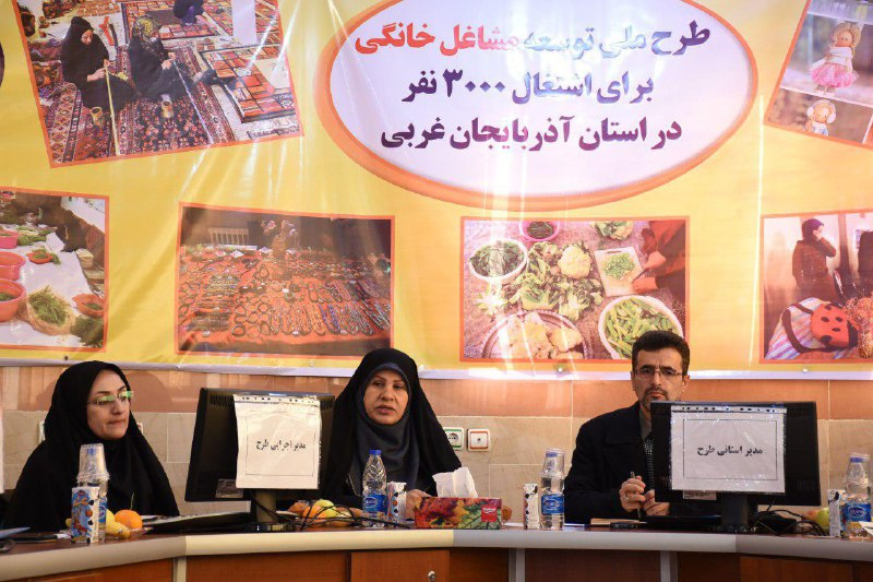 اجرای طرح توسعه مشاغل خانگی در هشت استان کشور