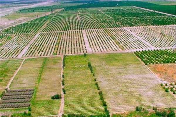بازگرداندن ۴۰۰ هکتار از اراضی حبس شده صنعتی تا پایان سال ۱۴۰۰