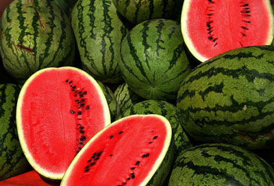 صادرات هندوانه ۵۰درصد بیشتر شد