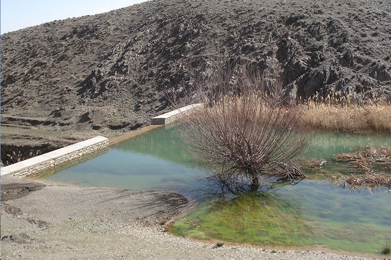 مشکل اصلی کم آبی مربوط به مصارف آب در حوزه غیر تولیدی است