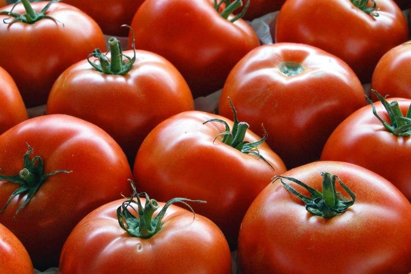 روسیه واردات گوجهفرنگی و سیب از آذربایجان را ممنوع کرد