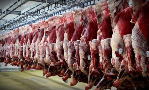 گوشت گوسفندی ۱۵ هزار تومان ارزان شد