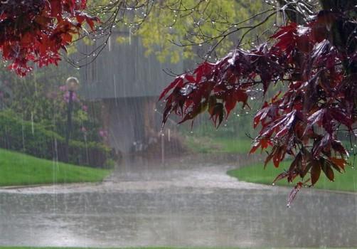 رشد ۳۹۴ درصدی بارشهای حوضه آبریز مرزی شرق کشور