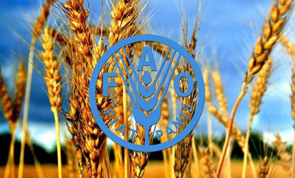 استفاده از فناوری اطلاعات برای آمارگیری کشاورزی