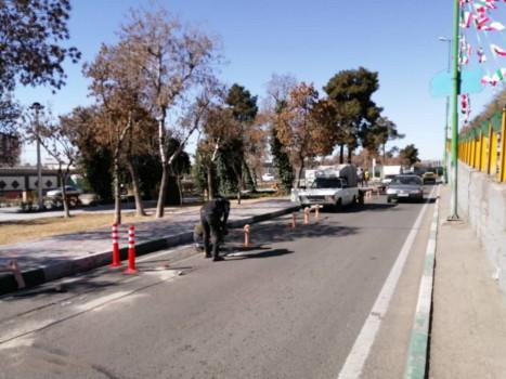 اجرای عملیات مسیر ایمن دوچرخه سواری در منطقه ۲۰