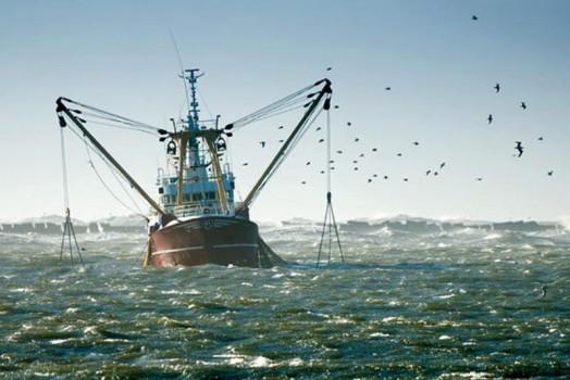 ارزش صادراتی ۳۲۰ میلیون دلاری آبزیان در ۱۰ ماه