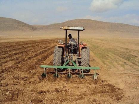 ۴ میلیون تن گندم از کشاورزان خریداری شد