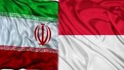 مسایل حمایتی زنان و خانواده در ایران و اندونزی بررسی شد