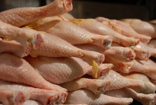 قیمت مرغ به ثبات میرسد