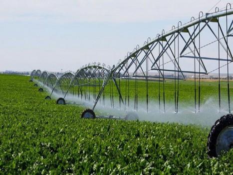 تصویب سند سازگاری با کم آبی استان مرکزی در کارگروه ملی
