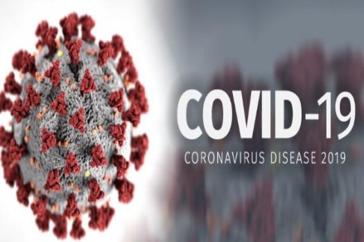 نخستین تزریق تست انسانی واکسن کرونا در هفته اول دیماه در ایران