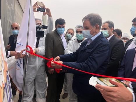 افتتاح فاز دوم واحد تولیدی تخم مرغ در شهرستان ری