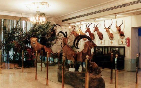 بازگشایی موزه دارآباد با آغاز سال نو و بهار طبیعت