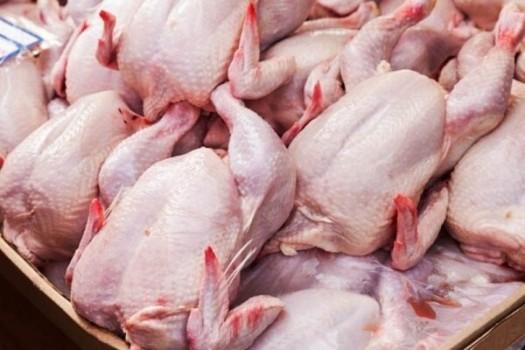 وعده معاون وزیر کشاورزی مبنی بر به آرامش رسیدن بازار مرغ