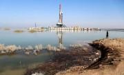 اقدامات صنعت نفت برای احیای هورالعظیم